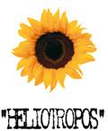 heliotropos